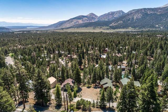 52 White Pine Dr., Mammoth Lakes, CA 93546 (MLS #210571) :: Mammoth Realty Group