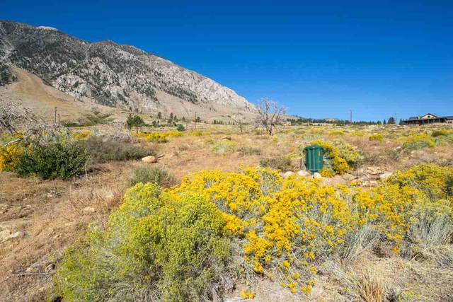 194 Sierra Wave, Bishop, CA 93514 (MLS #190289) :: Mammoth Realty Group