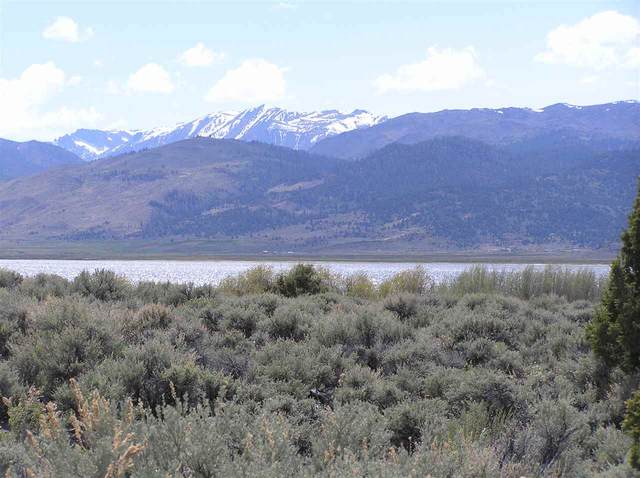 235 Lakeside Drive, Bridgeport, CA 93546 (MLS #200273) :: Mammoth Realty Group