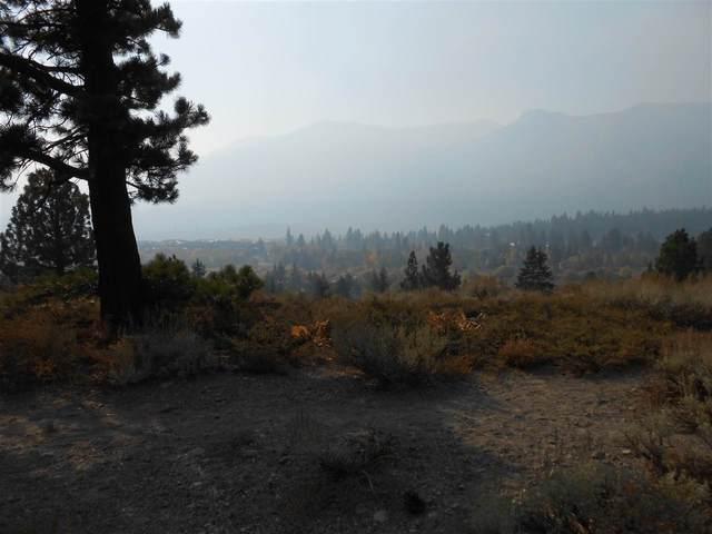 161 Panorama Drive, Mammoth Lakes, CA 93546 (MLS #200821) :: Millman Team