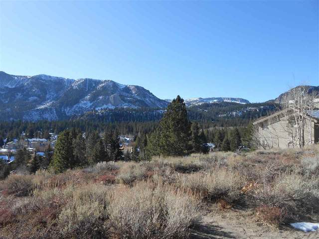 161 Panorama Drive, Mammoth Lakes, CA 93546 (MLS #200821) :: Millman Team
