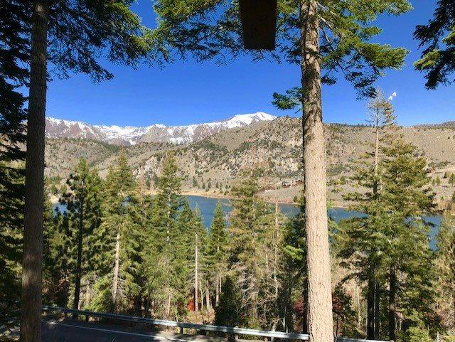 25 Chipmunk Lane Lane, June Lake, CA 93529 (MLS #180423) :: Rebecca Garrett - Mammoth Realty Group