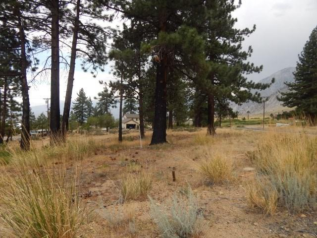 Lot 26 Hilltop Estates 2, Bishop, CA 93514 (MLS #180730) :: Mammoth Realty Group