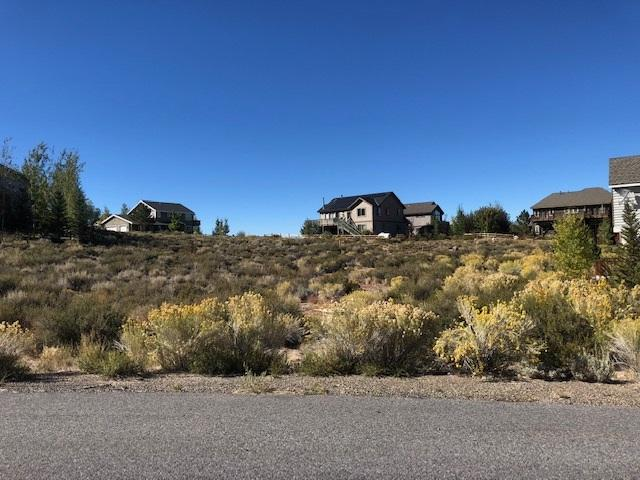 44 Hidden Canyon Court, Crowley Lake, CA 93546 (MLS #180834) :: Rebecca Garrett - Mammoth Realty Group