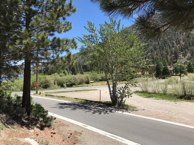 Corner of Alderman Knoll Bruce Street, June Lake, CA 93529 (MLS #190005) :: Mammoth Realty Group