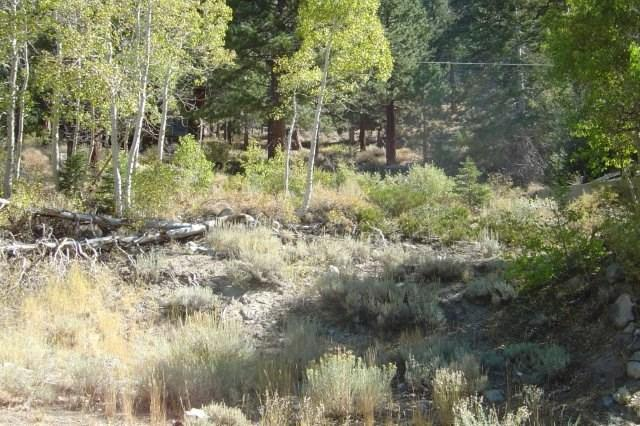 2487 Highway 158, June Lake, CA 93529 (MLS #190183) :: Millman Team