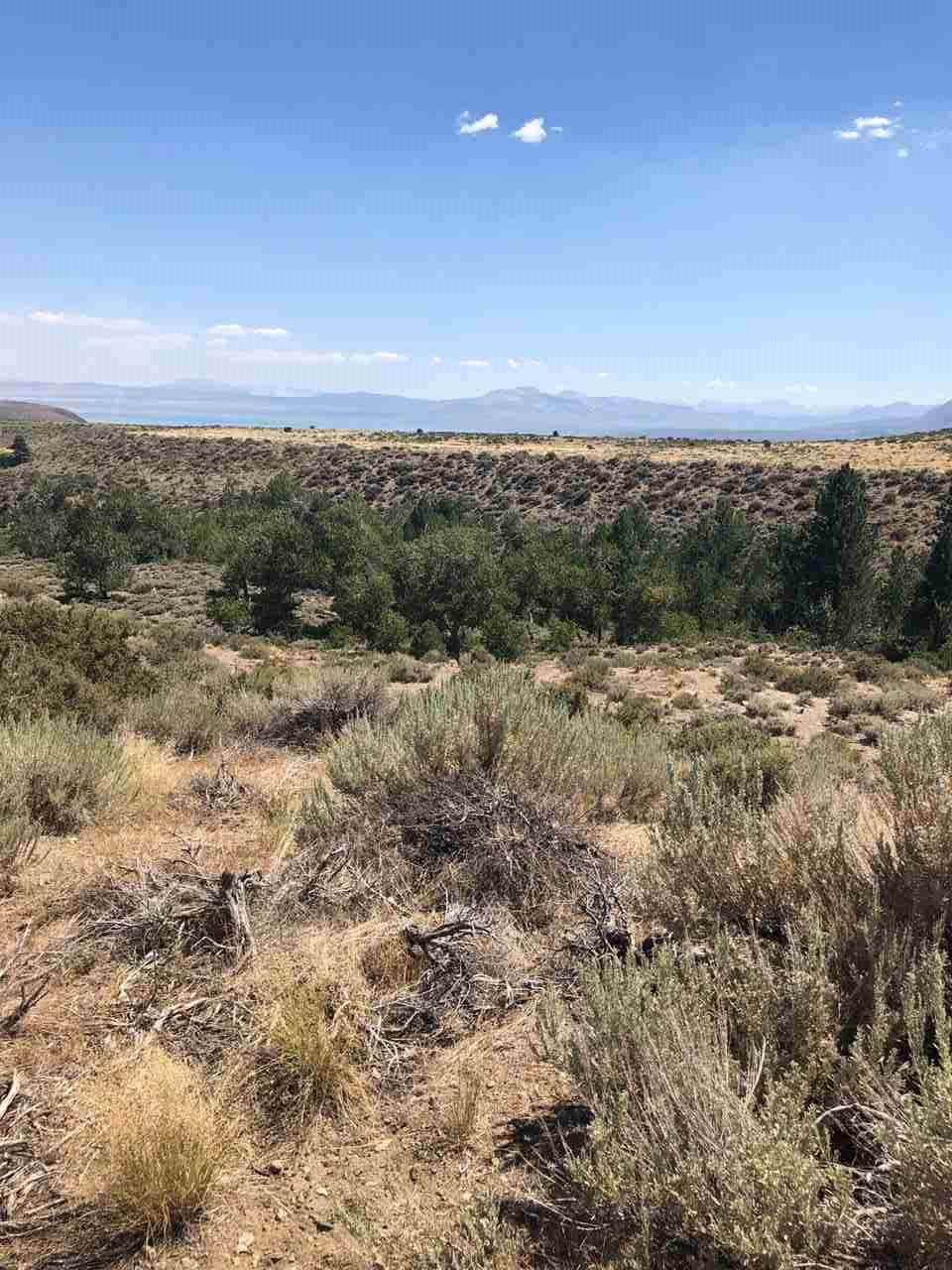 Lot 10 Block 7 Mono Lake Dr Drive - Photo 1