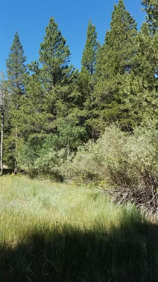 000 Aspen Grove Lane, June Lake, CA 93529 (MLS #200607) :: Mammoth Realty Group