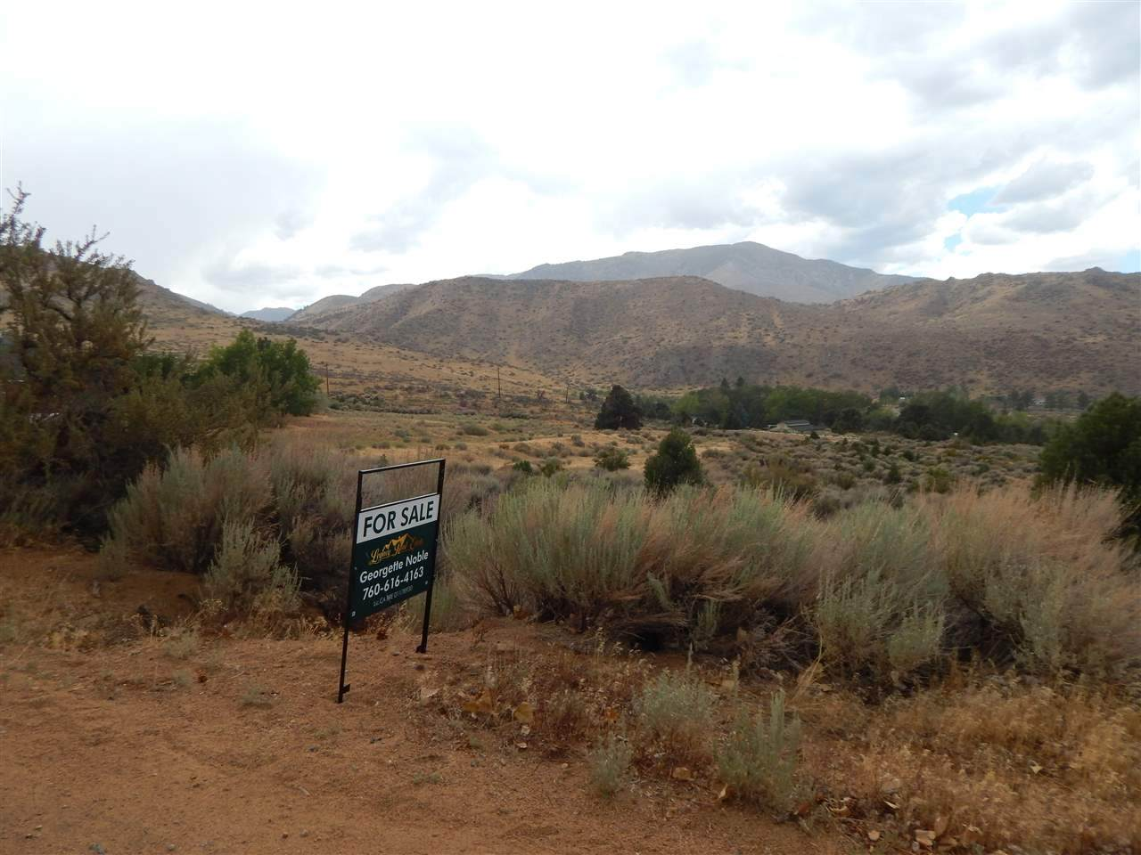 View Lot Dry Canyon Road - Photo 1