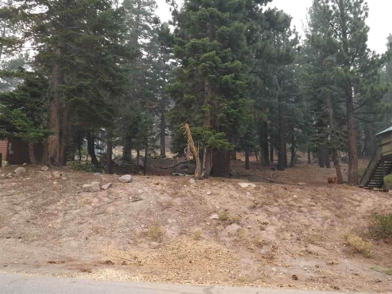 1585 Majestic Pines Drive - Photo 1