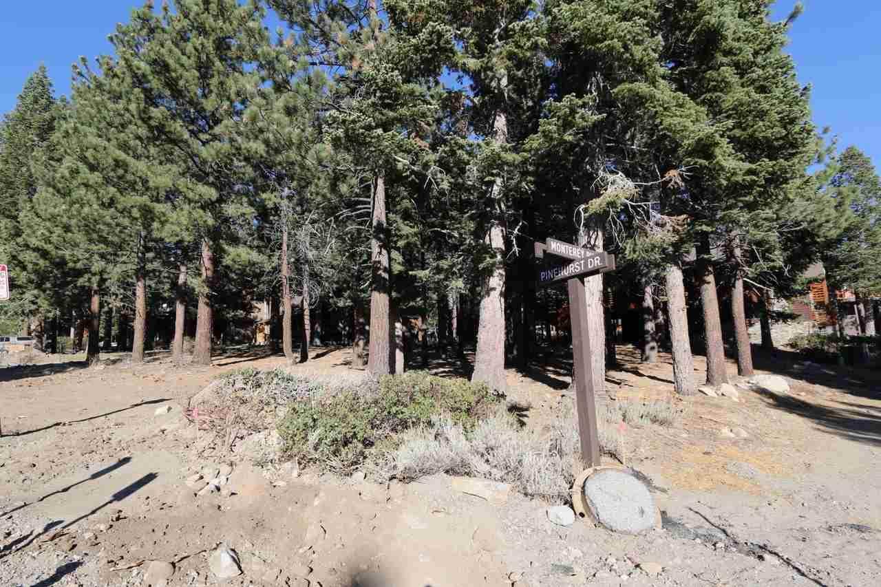 296 Monterey Pine Road - Photo 1
