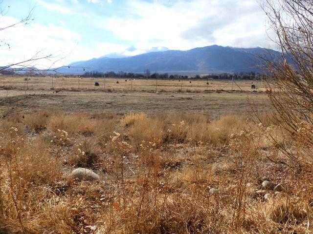 3134 Indian Creek, Bishop, CA 93514 (MLS #180617) :: Rebecca Garrett - Mammoth Realty Group