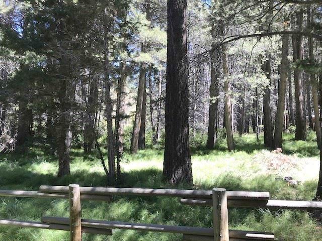 Lot 8 Palisades, June Lake, CA 93529 (MLS #190246) :: Mammoth Realty Group