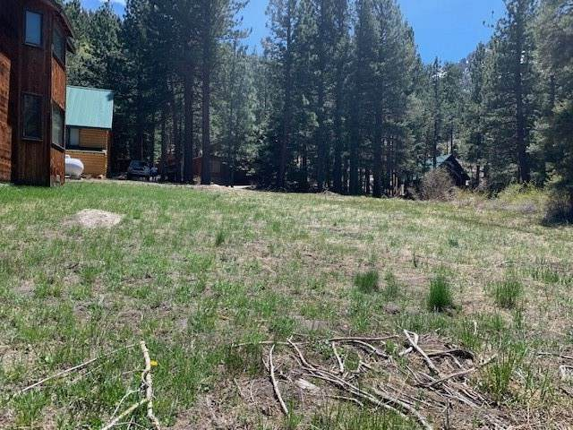 00 Steelhead Road, June Lake, CA 93529 (MLS #200344) :: Mammoth Realty Group