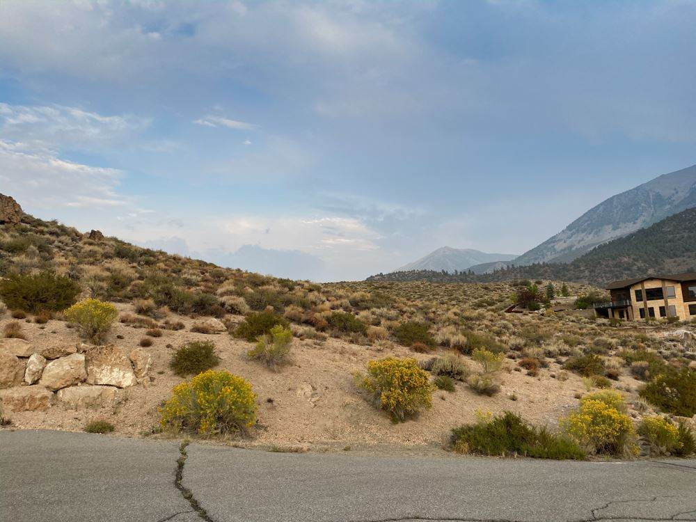 184 Red Bluff Trail - Photo 1