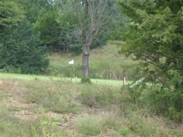 2800 Cedarsprings Lane, Wamego, KS 66547 (MLS #62475) :: Stone & Story Real Estate Group