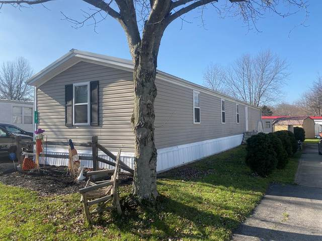 79 Chestnut, ONTARIO, OH 44906 (MLS #9048886) :: The Holden Agency
