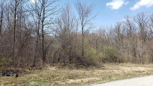 0 Township Road 188, Marengo, OH 43334 (MLS #9049703) :: The Holden Agency
