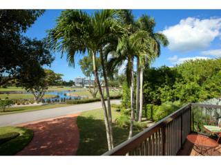 376 Leatherfern Lane, Marco Island, FL 34145 (MLS #2170277) :: Clausen Properties, Inc.