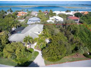 320 Wild Orchid Lane, Marco Island, FL 34145 (MLS #2170605) :: Clausen Properties, Inc.