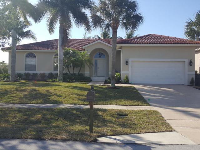 1203 Whiteheart Avenue, Marco Island, FL 34145 (MLS #2171509) :: Clausen Properties, Inc.