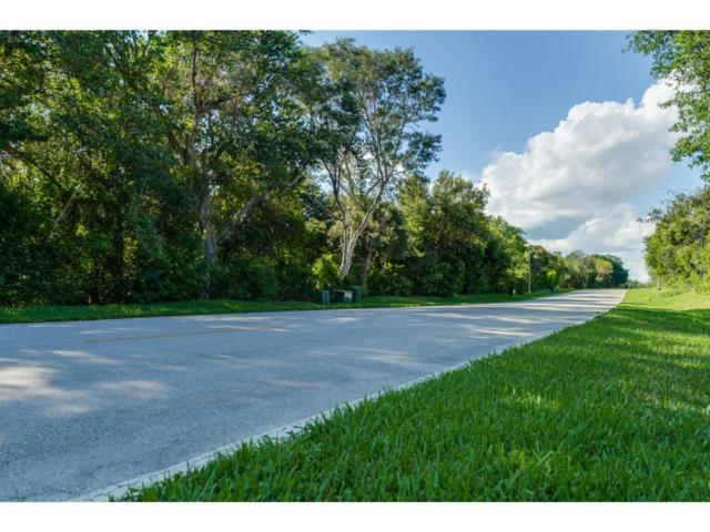 WATER DIRECT Whiskey Creek Drive #0, Marco Island, FL 34145 (MLS #2171524) :: Clausen Properties, Inc.