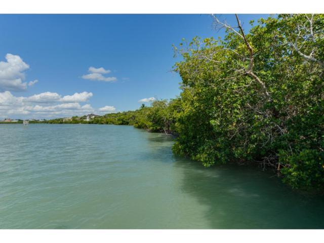 WATER DIRECT Whiskey Creek Drive #0, Marco Island, FL 34145 (MLS #2171526) :: Clausen Properties, Inc.