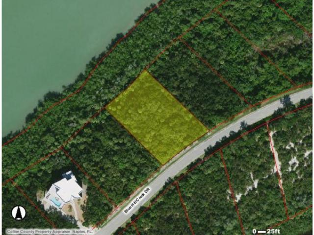 1097 Blue Hill Creek Drive #0, Marco Island, FL 34145 (MLS #2171824) :: Clausen Properties, Inc.