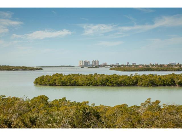 WATER DIRECT Blue Hill Creek Drive #0, Marco Island, FL 34145 (MLS #2180335) :: Clausen Properties, Inc.
