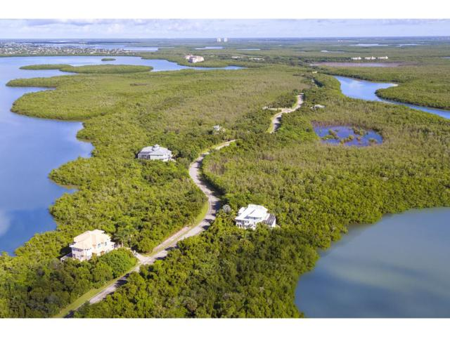WATER DIRECT Whiskey Creek Drive #0, Marco Island, FL 34145 (MLS #2191160) :: Clausen Properties, Inc.