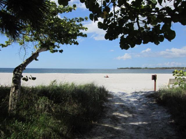 3000 Royal Marco Way #312, Marco Island, FL 34145 (MLS #2152552) :: Clausen Properties, Inc.