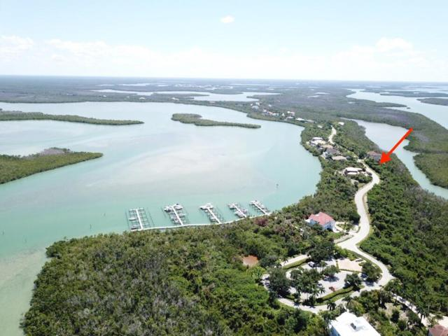 1150 Blue Hill Creek Drive #0, Marco Island, FL 34145 (MLS #2191401) :: Clausen Properties, Inc.