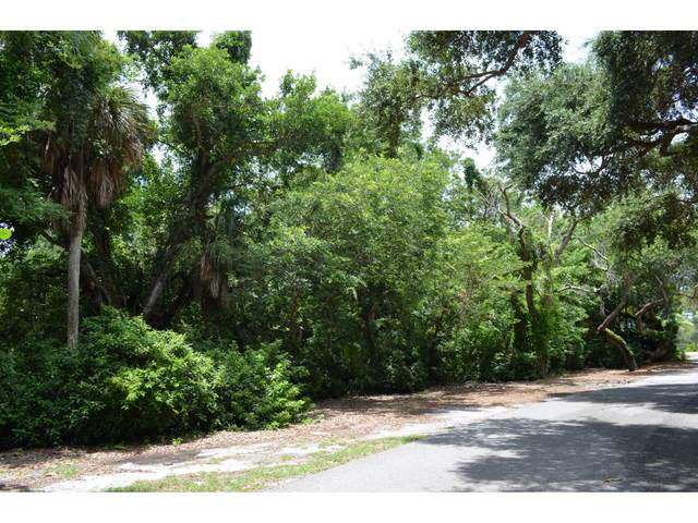 377 Morning Glory Lane #0, Marco Island, FL 34145 (MLS #2201574) :: Clausen Properties, Inc.