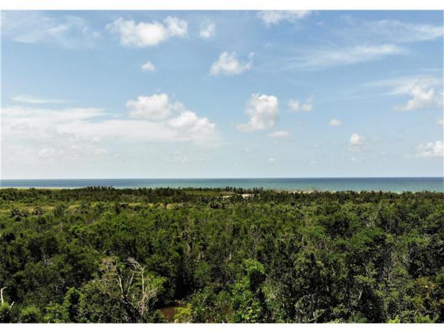 GULF Spinnaker Drive #12, Marco Island, FL 34145 (MLS #2181826) :: Clausen Properties, Inc.