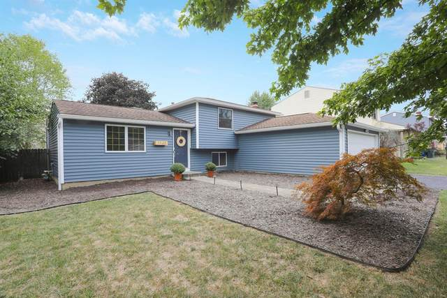 1145 Discovery Drive, Worthington, OH 43085 (MLS #53930) :: MORE Ohio