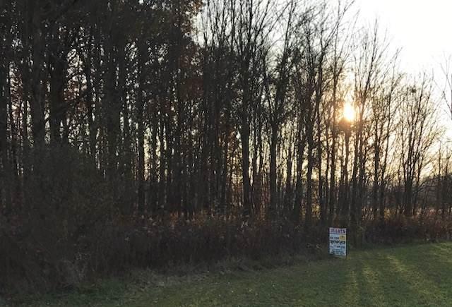 0 Newmans Cardington Rd W, Prospect, OH 43342 (MLS #51544) :: MORE Ohio