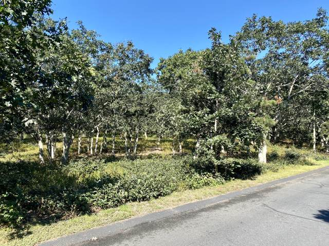 40 Edgewood Drive, Edgartown, MA 02539 (MLS #32000662) :: Cape & Islands Realty Advisors