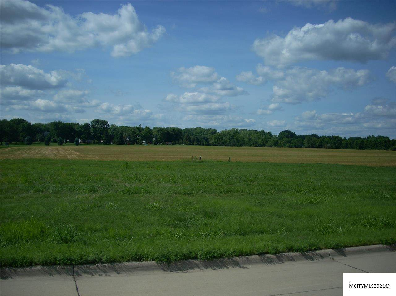 Lot 19 Asbury Farm 8th Addition - Photo 1