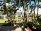 7142 Kamehameha V Hwy - Photo 8