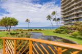 2481 Kaanapali Pkwy - Photo 12
