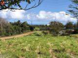 653 Kauhikoa Rd - Photo 9