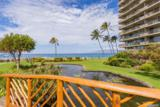 2481 Kaanapali Pkwy - Photo 7