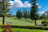 500 Kapalua Dr - Photo 9
