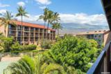 2191 Kihei Rd - Photo 19