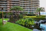 2481 Kaanapali Pkwy - Photo 18