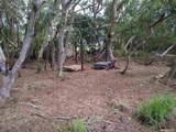 36 Koala Way - Photo 1