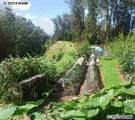 1818 Piiholo Rd - Photo 24