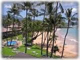 2450 Kihei Rd - Photo 19