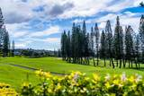 500 Kapalua Dr - Photo 23