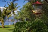 2936 Kihei Rd - Photo 30